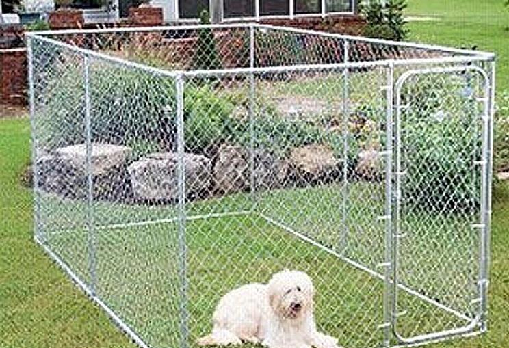 Koiran Aitaus